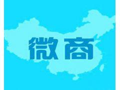 中国微商博览会